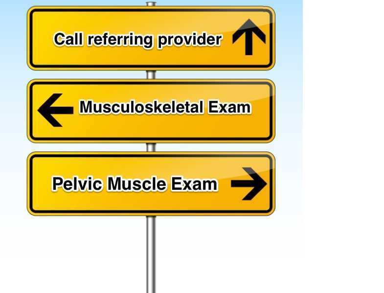 Musculoskeletal Screening Model for Pelvic Pain