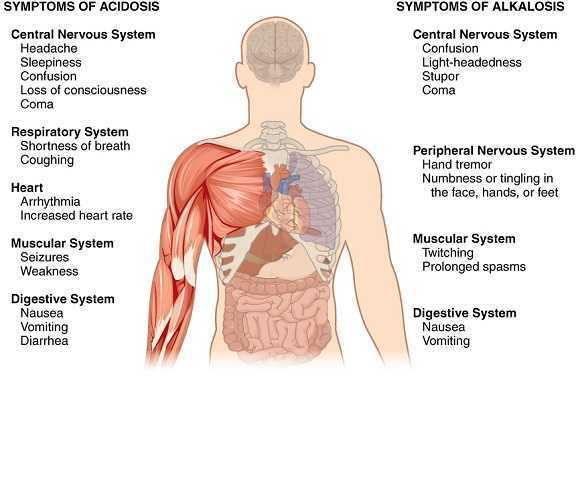 Symptoms_of_Acidosis_Alkalosis.jpg