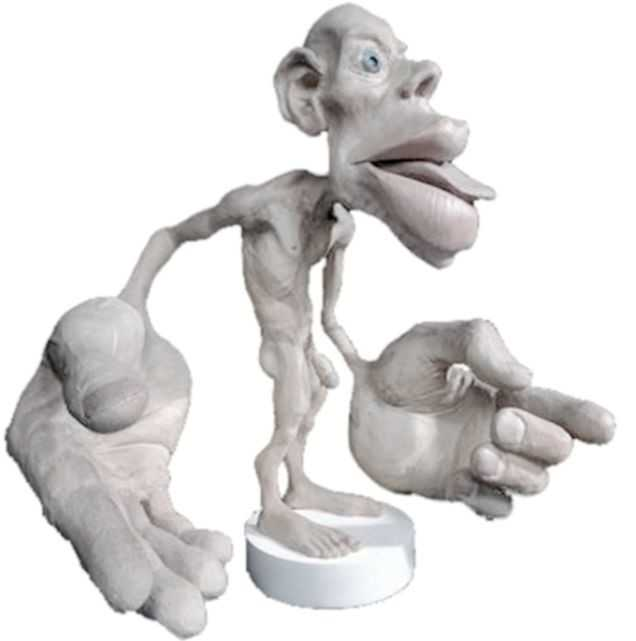 Homunculus representing how much of the cerebral cortex is devoted to sensing each part of the body